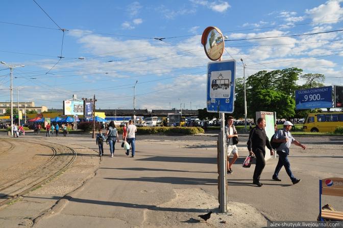 Пасажиру на замітку: дізнатися про зміни у громадському транспорті Львова можна через новий сайт фото 1