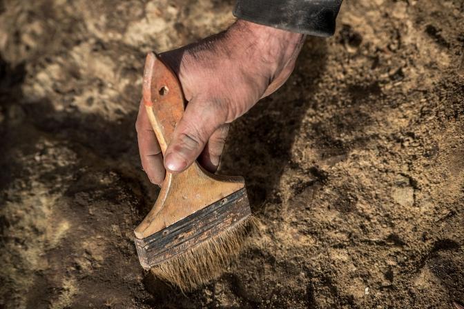 фото: Рятувальна археологічна служба