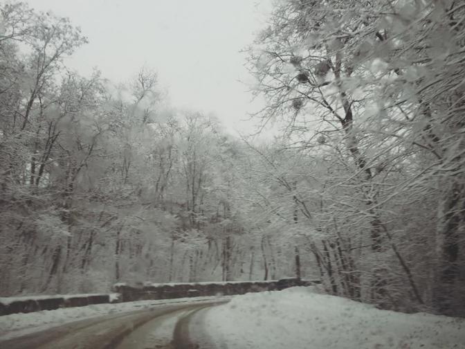 Зимовий настрій: соцмережі заполонили фото засніженого Львова й Карпат фото 9