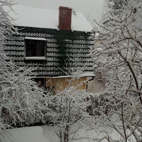 Зимовий настрій: соцмережі заполонили фото засніженого Львова й Карпат фото 2