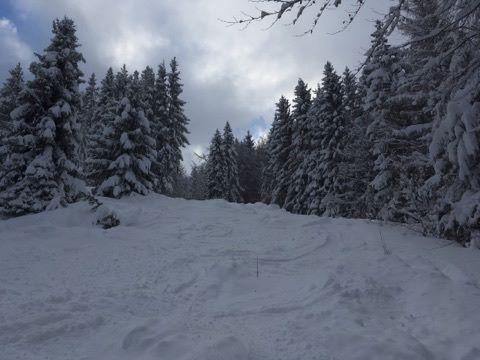 Зимовий настрій: соцмережі заполонили фото засніженого Львова й Карпат фото 3