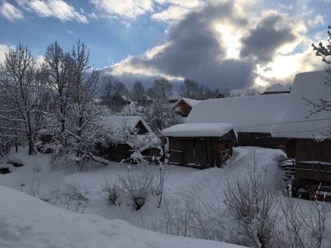 Зимовий настрій: соцмережі заполонили фото засніженого Львова й Карпат фото 6