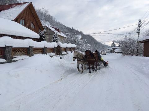 Зимовий настрій: соцмережі заполонили фото засніженого Львова й Карпат фото 5