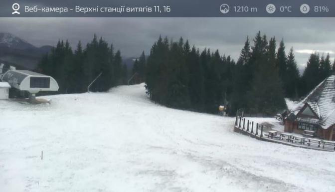 Гайда на лижі: в Карпатах випав сніг фото 2