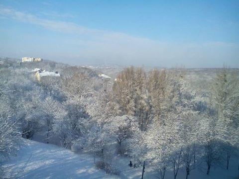 Зимовий настрій: соцмережі заполонили фото засніженого Львова й Карпат фото 1