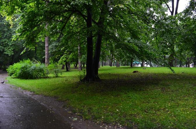 Колись і тепер: як виглядали львівські парки фото 2