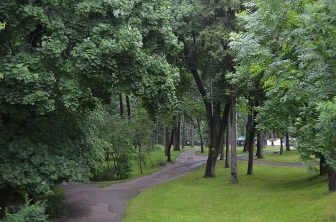 Колись і тепер: як виглядали львівські парки фото 8