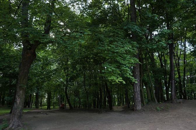Колись і тепер: як виглядали львівські парки фото 17