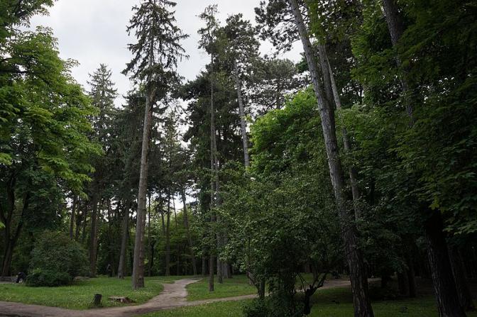 Колись і тепер: як виглядали львівські парки фото 7