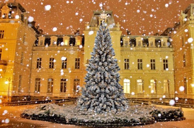 """Фото: сторінка палацу Потоцьких у соцмережі """"Фейсбук"""""""