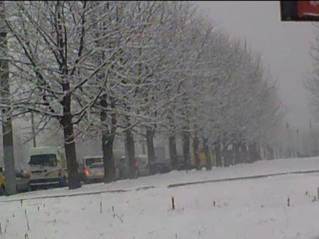 Сьогодні на Львівщині мокрий сніг 81ce230cc8048