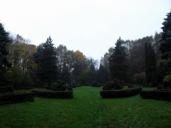 Приємна новина: в Стрийському парку відновлять жоржинарій фото 2